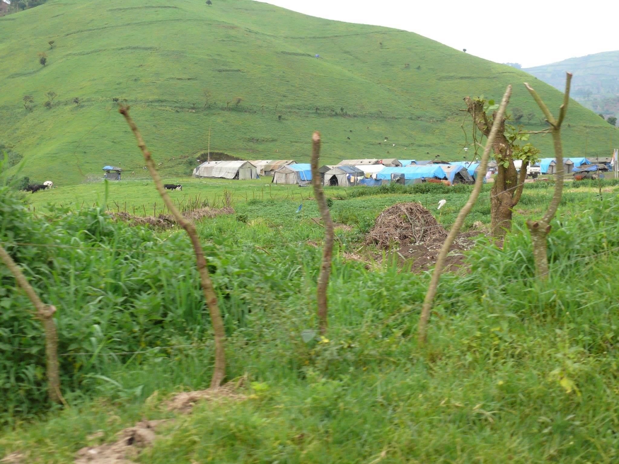 Flüchtlingslager in Masisi